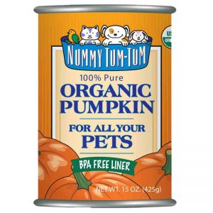 canned pumpkin for dogs benefits