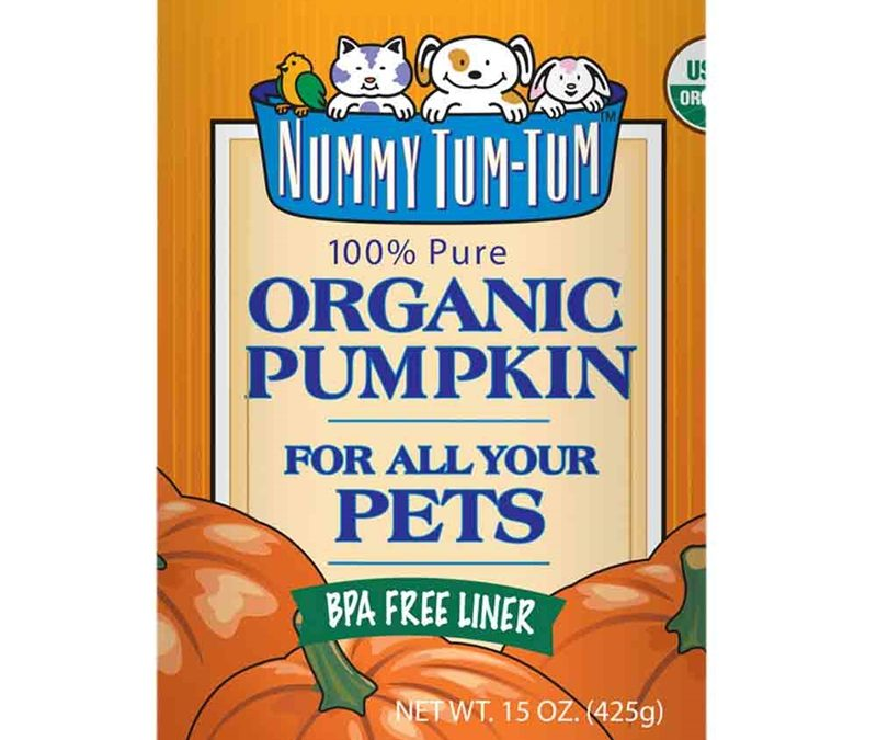 BENEFITS OF ADDING PUMPKIN TO YOUR PET'S DIET