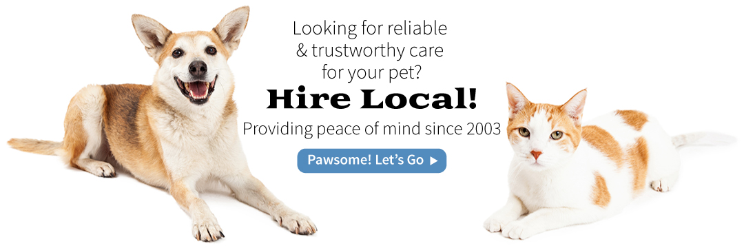 hire a local pet and professional pet sitter here in Maryland